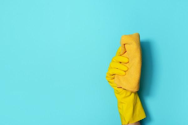 Strumenti per la pulizia professionale